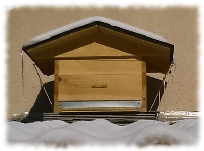 toit-ruche-12c_2.jpg