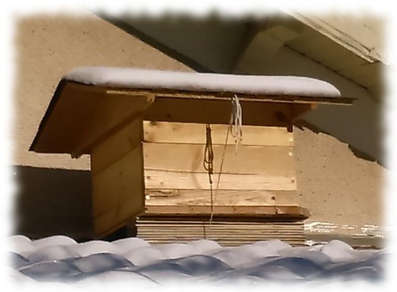 toit-ruche-12c_3.jpg