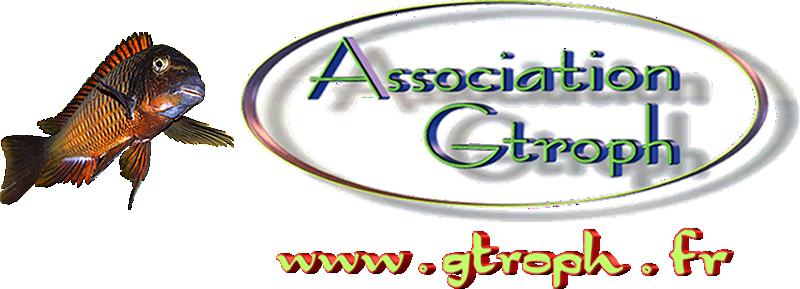 """Association GTroph"""