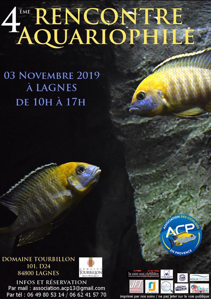 Bourse Association des Cichlidés en Provence