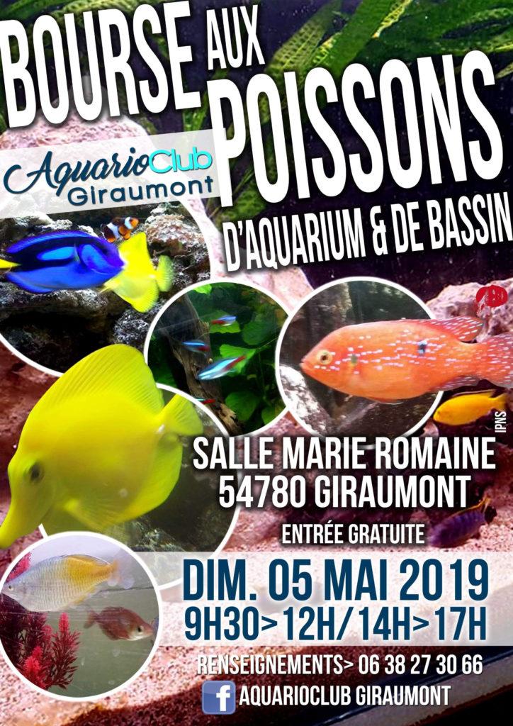 Aquarioclub de Giraumont Bourse