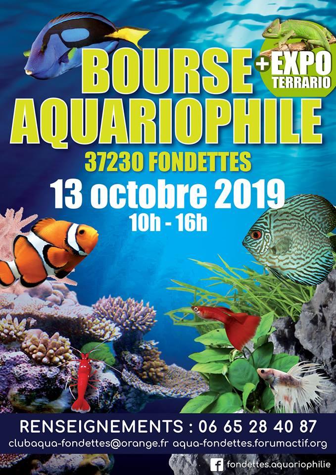 Club d'aquariophilie de Fondettes