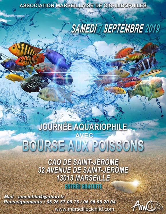 Association Marseillaise de Cichlidophiles Bourse