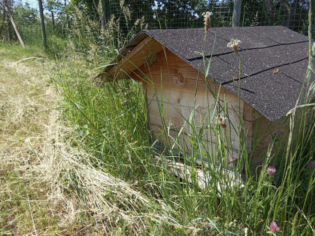 Astuces en apiculture: ruche dadant 12 cadres avec toit chalet