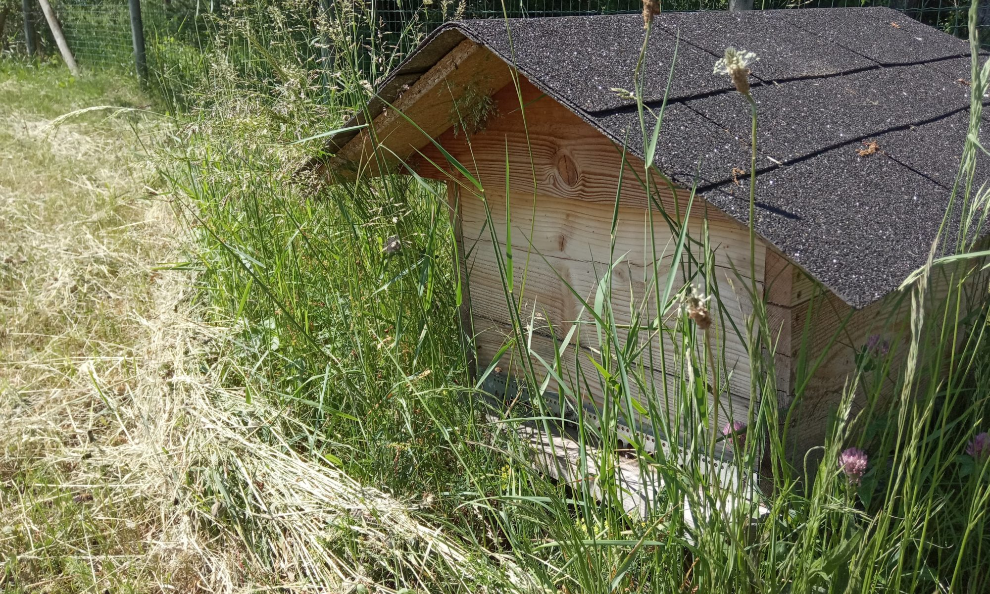 Mettre une ruche dans son jardin