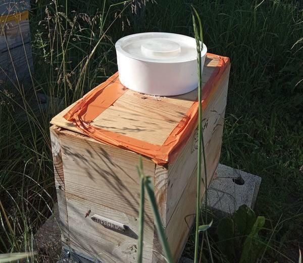 Ruchette avec son nourrisseur rond, mieux que ceux en bois et bon marché pour mettre le sirop de sucre pour abeilles