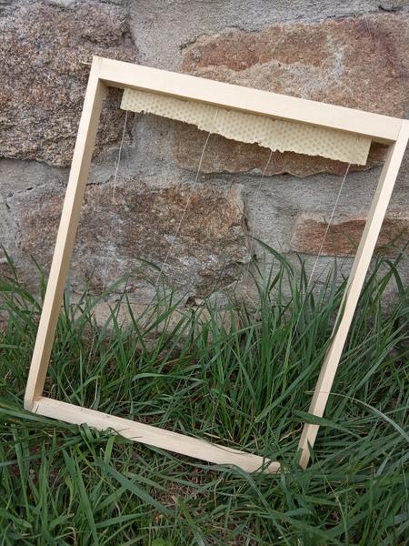 Cadre Layens pour ruche horizontal