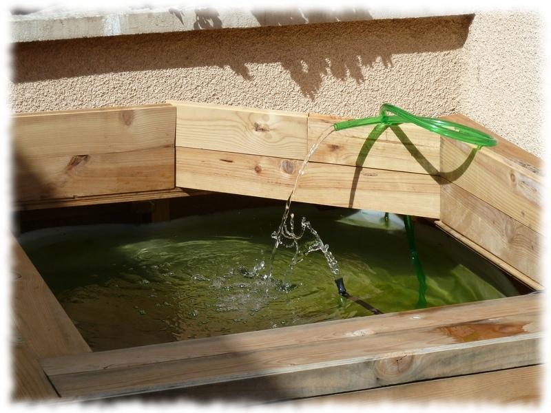 Mon bassin hors-sol de 800L Bassin_pompe4